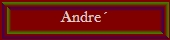 Andre´